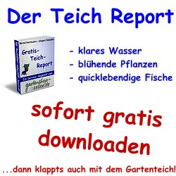 Der-Teich-Report sofort gratis downloaden...